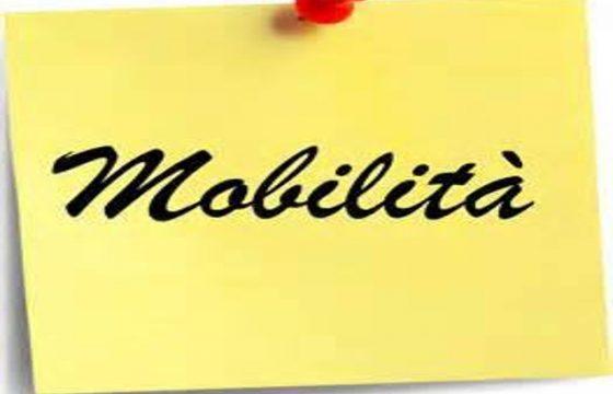 VVF: Mobilità ricognitiva capi reparti non specialisti