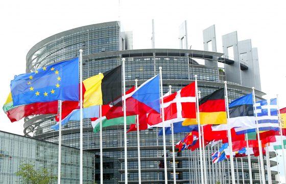 Dipartimento Internazionale: Una risoluzione del Parlamento Europeo contro la precarietà