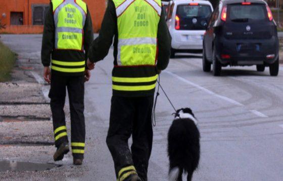VVF: Direzione Centrale per l'Emergenza il Soccorso Tecnico e l'Antincendio Boschivo – Convocazione incontro settore Cinofilo