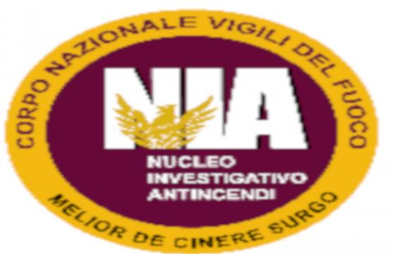 VVF: Settore NIA – Organizzazione