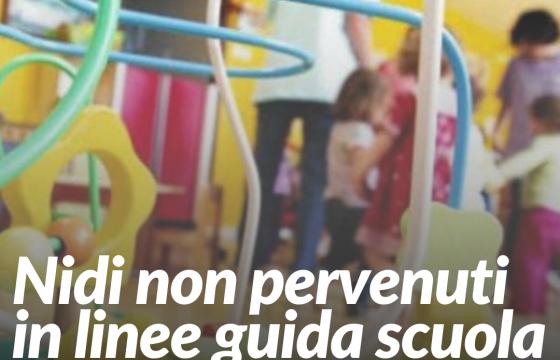 Fp Cgil, nidi non pervenuti in linee guida apertura scuole a settembre