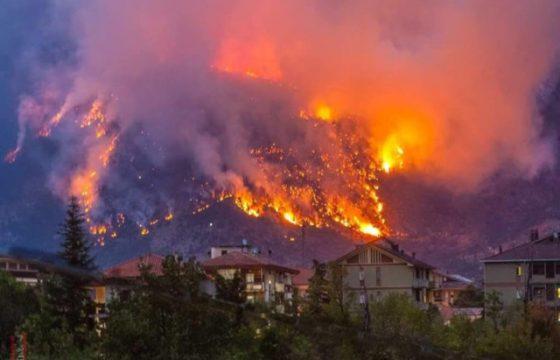 VVF: Abruzzo – Campagna boschiva 2021